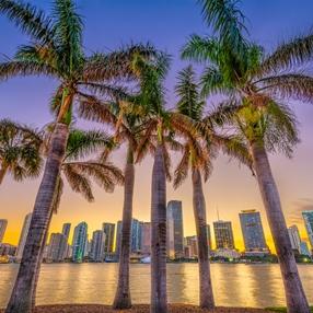 Storage for artwork; NADA Miami