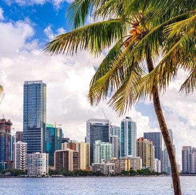 art moving services in Miami