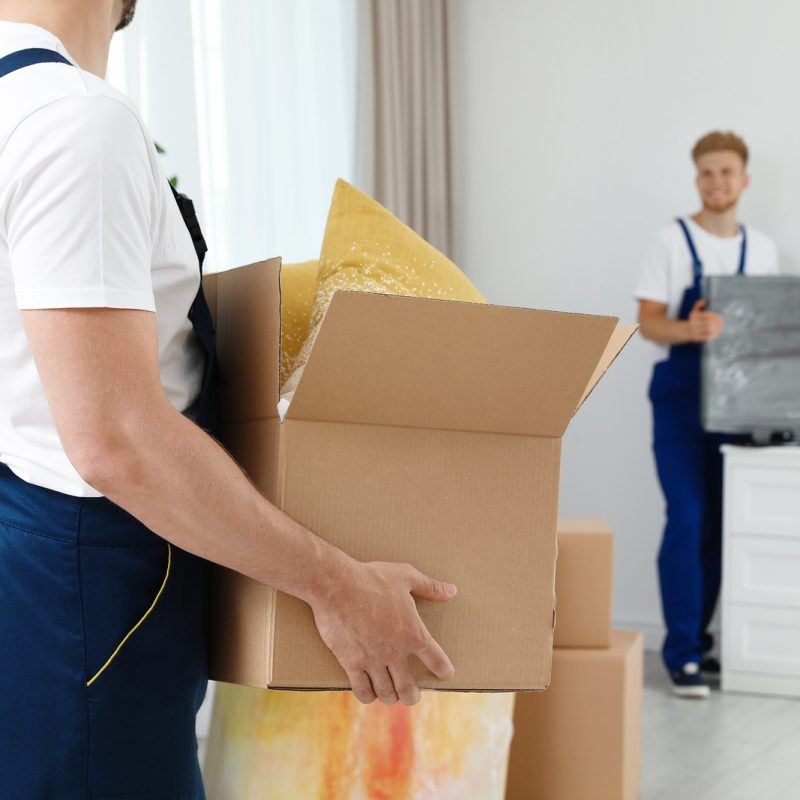 Best Moving Company New York to Florida