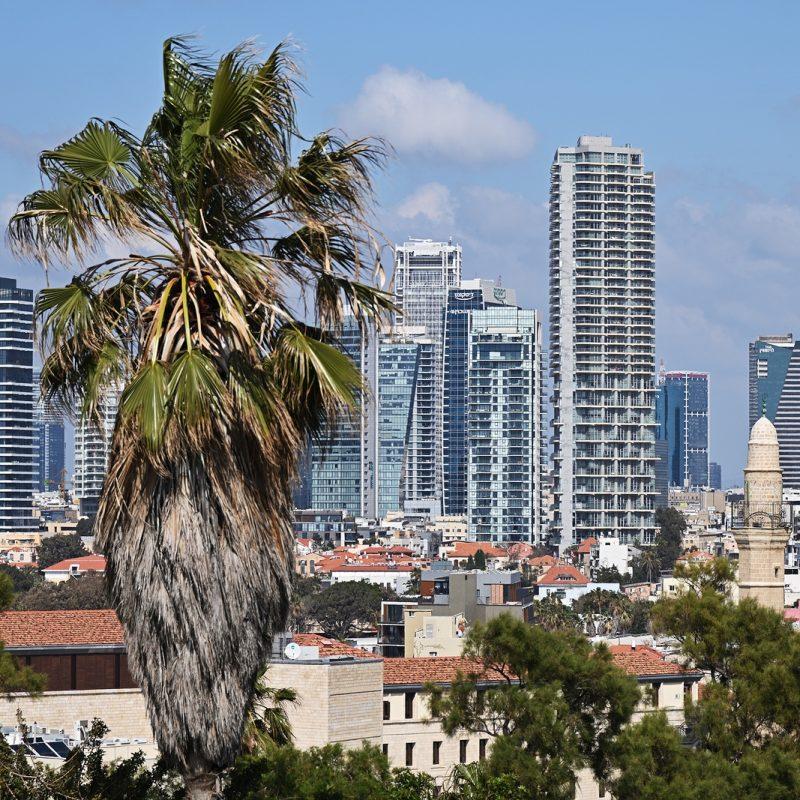 Cutting-Edge International Art in Tel Aviv