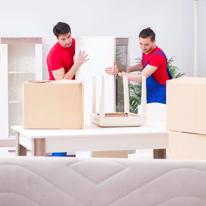 Furniture Shipping Services
