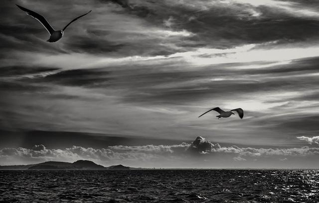The True Art of Photography in the Work of Luiz Queiroz
