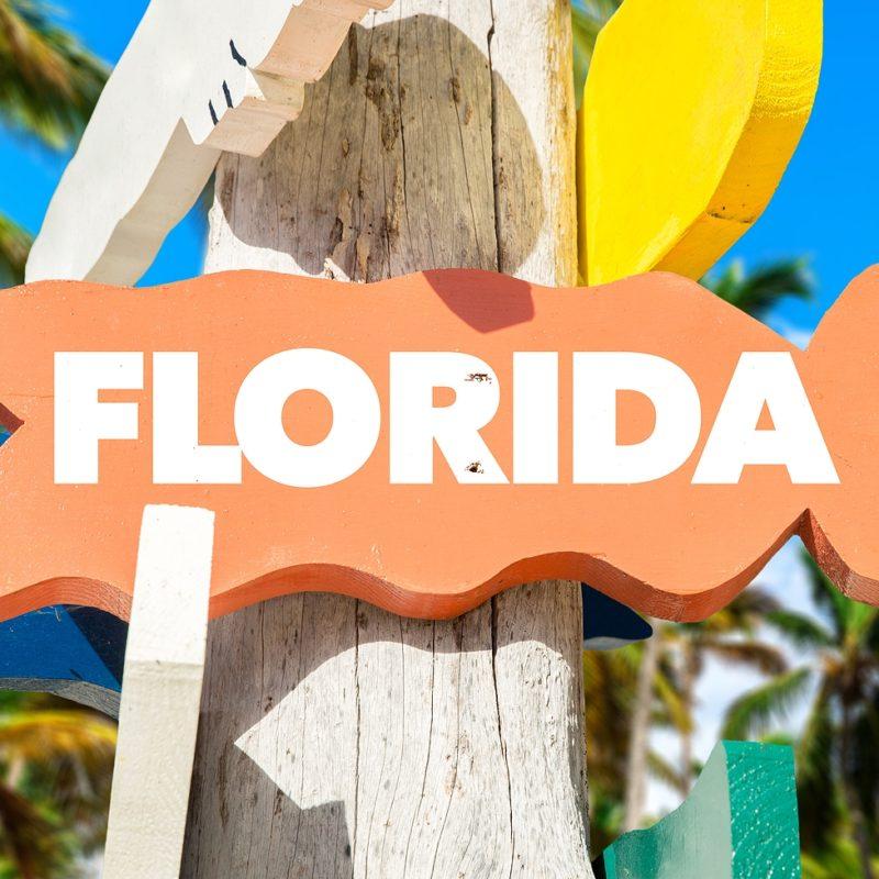 Fine Art Shuttle New York – Florida from Fine Art Shippers