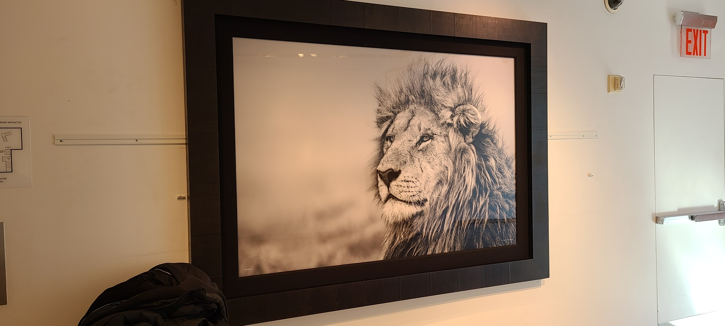 Fine Art Photography Shipping Services in New York