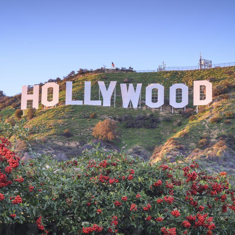 Art Logistics Services in Los Angeles, CA